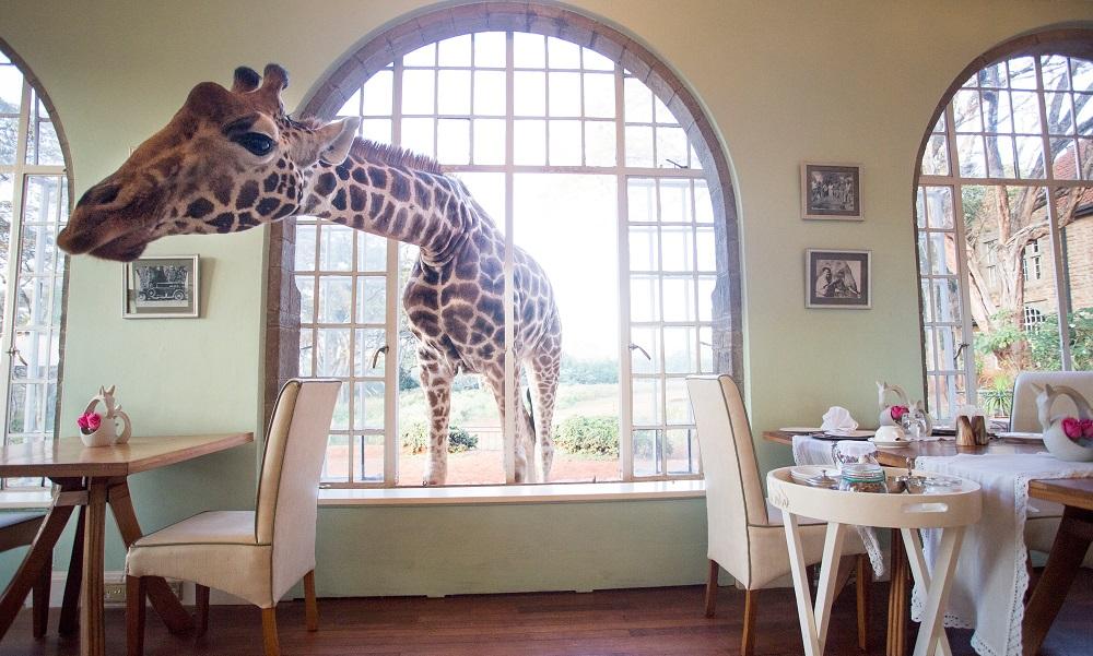 séjour insolite enfants Kenya