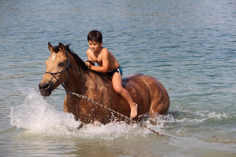 Equitation italie famille