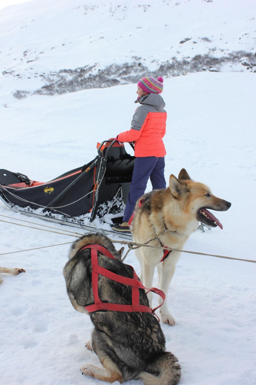 Vacances ski famille luxe